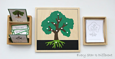 Parts of a tree learning activities and free printables.