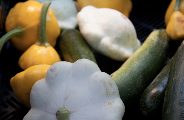 How To Grow Patty Pan Squash