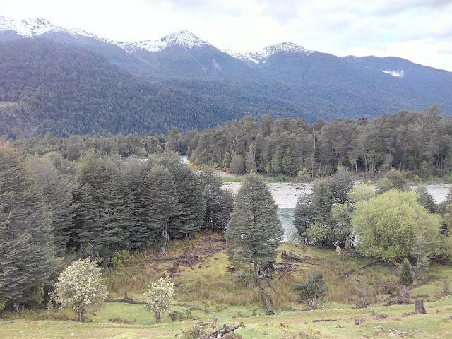 Confluencias ríos Panela y Frío, Carretera Austral, Chile