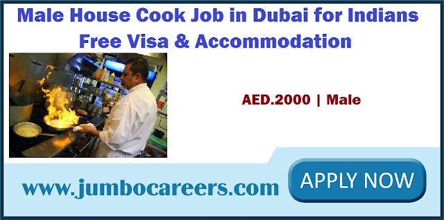 Male House Cook Job in Dubai