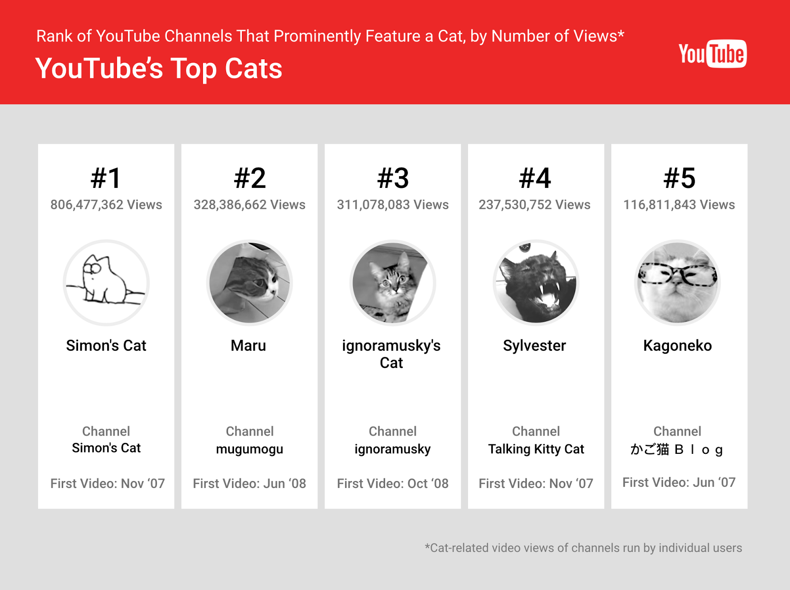 Celebrate National Cat Day With Youtubes Most Popular Felines Knight Tumble Dryers On White Dryer Wiring Diagram Heres The Full List
