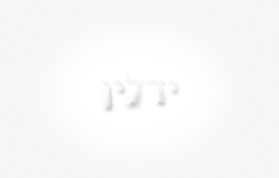 עיצוב לוגו ישן - רון ידלין