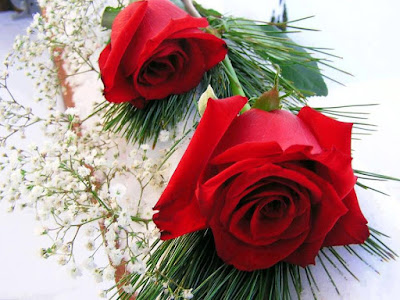 Rose Day Pics Download