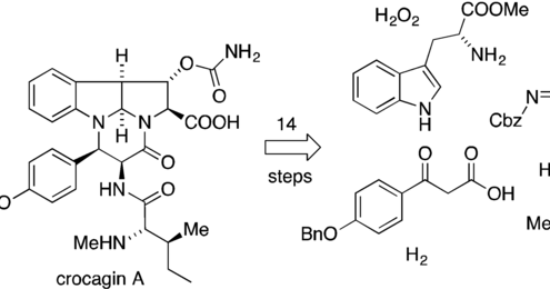 Organometallic Chemistry: Total Synthesis of Crocagin A
