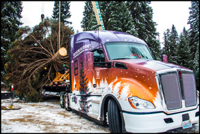 Kenworth T680 Hauling the 2017 US Capitol Christmas Tree