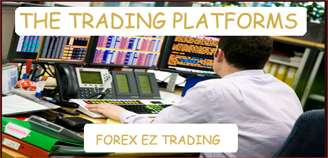Forex currency trading platform