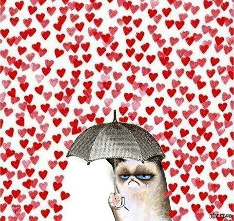 ненавижу одиночество в 14 февраля