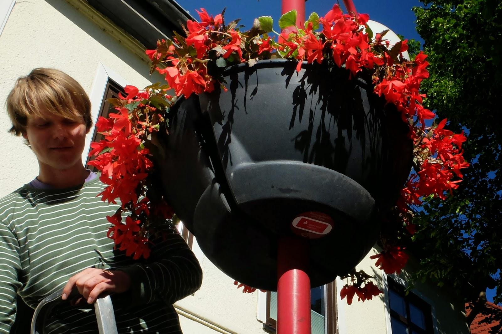 Bernau wieder ein bisschen hübscher - Neue Blumenampeln in der Bernauer Innenstadt...