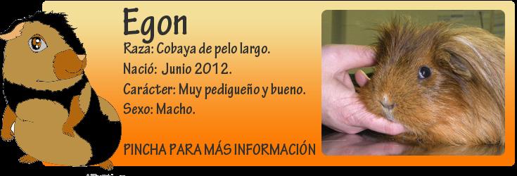 http://almaexoticos.blogspot.com.es/2014/06/egon-preciosa-cobaya-abandonada-por-su.html