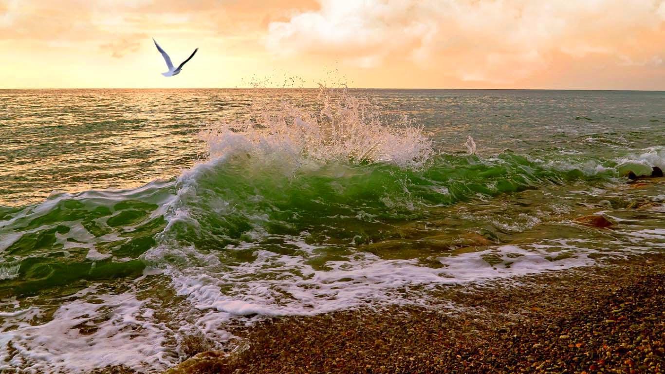 jordar-laut-pemandangan-gambar