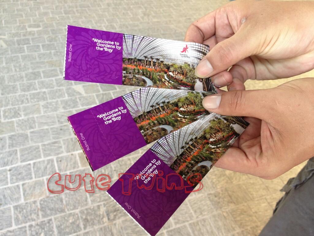 Kembar Imut Jalan Review Gardens By The Bay Singapore Garden Dewasa Tiket Harga Flower Dome