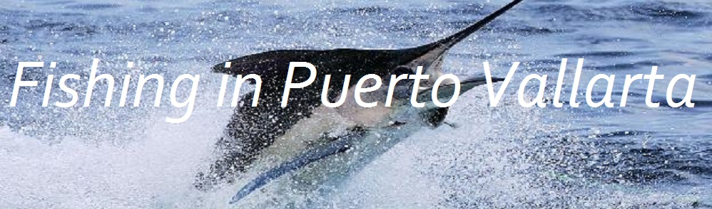 Fishing Charters in Puerto Vallarta, Mexico