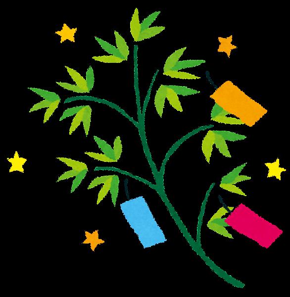 七夕のイラスト笹の葉と短冊背景無し かわいいフリー素材集
