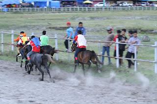 Dandim Aceh Tengah : Pacuan Kuda Event Daya Tarik Wisatawan ke Tanah Gayo