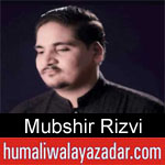 https://www.humaliwalyazadar.com/2018/09/mubshir-rizvi-nohay-2019.html