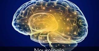 Cérebro Triúno