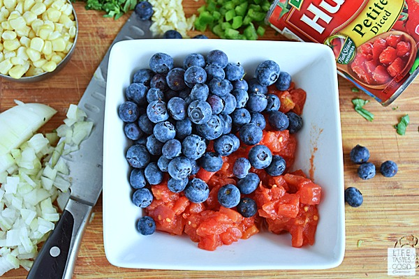Red, White, and Blueberry Salsa | by Life Tastes Good
