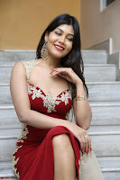 Rachana Smit in Red Deep neck Sleeveless Gown at Idem Deyyam music launch ~ Celebrities Exclusive Galleries 026.JPG
