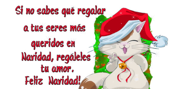 Frases Mas Bellas De Amor Frases Para Dedicar Regalos Para: Bonitas Frases Para Navidad