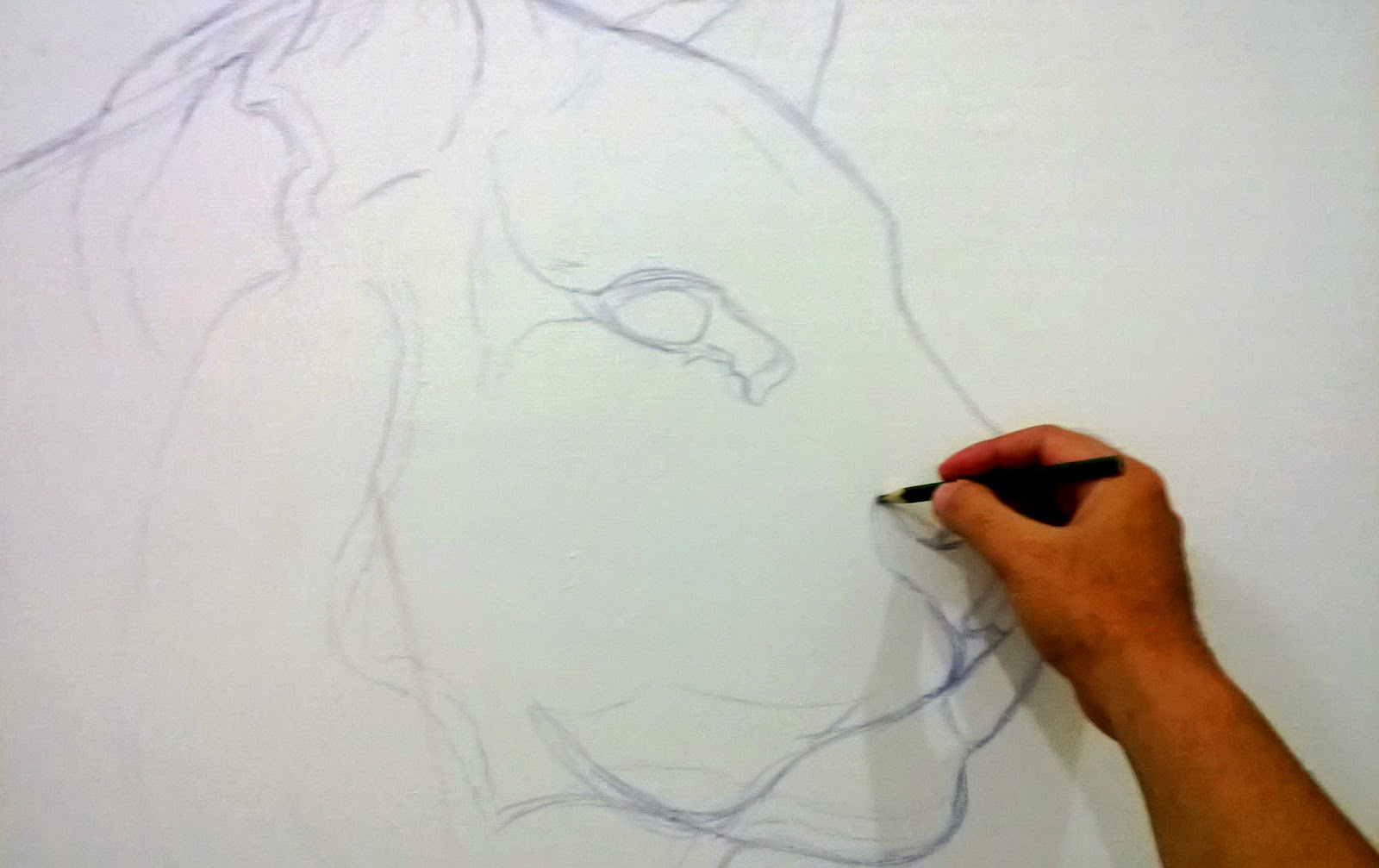gambar sketsa muka harimau sobsketsa