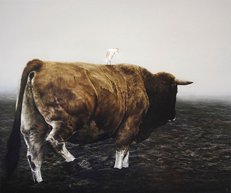 Animal Portraits by Cédric Peltier.