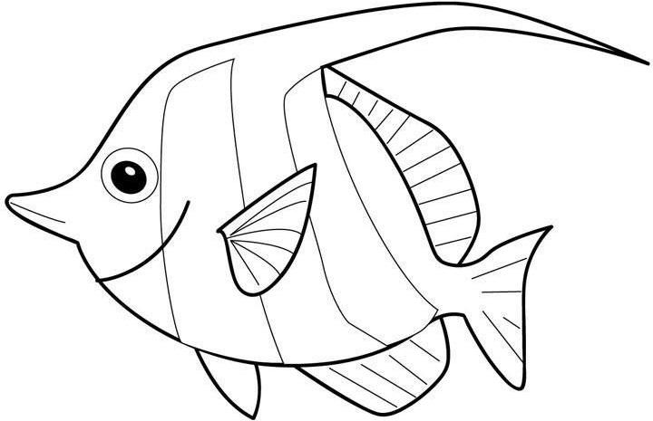 Tranh tô màu con cá biển