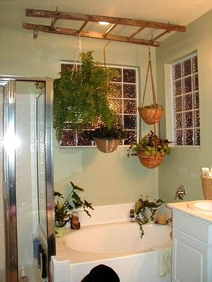Ashbee Design Ladders In The Bathroom