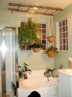 Ashbee Design Ladders In The Bathroom