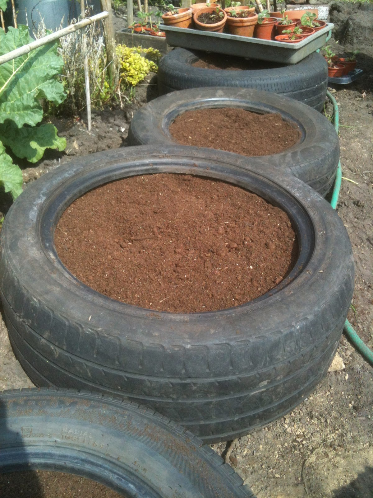 Tyres as strawberry beds act as a biomass.