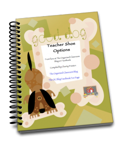 Want your free copy of the Teacher Shoe Options guide?