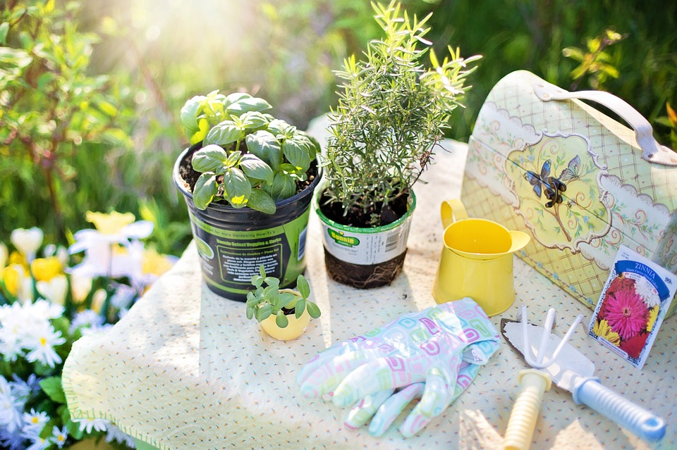 Summer Gardening – Ways to Bliss it out