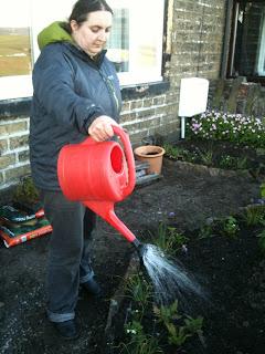 summer gardening, herb garden, gardening, life on pig row