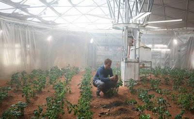 Os vegetais já podem ser cultivados no solo de marte