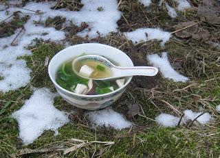 Klare Brühe mit Tofu, Spinat und Shiitakepilzen
