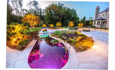 Cipriano Landscape Design & Custom Pools Mahwah Nj 07430 Stradivarius Violin Pool and Plants Photo 2016