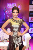 Shreya Saran in Golden Tight fit LegSplit Gown at Zee Telugu Apsara Awards 2017 07.JPG