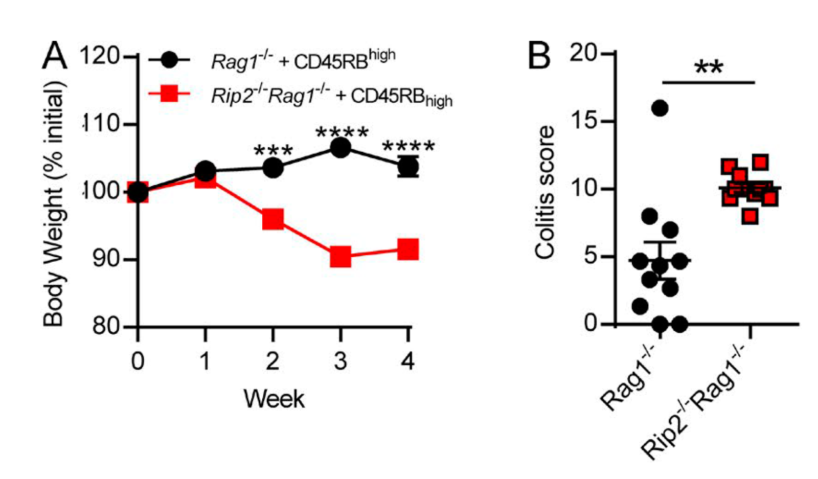 hight resolution of interestingly colitis in rip2 rag1 hosts could not be prevented by co transfer of foxp3 t regs