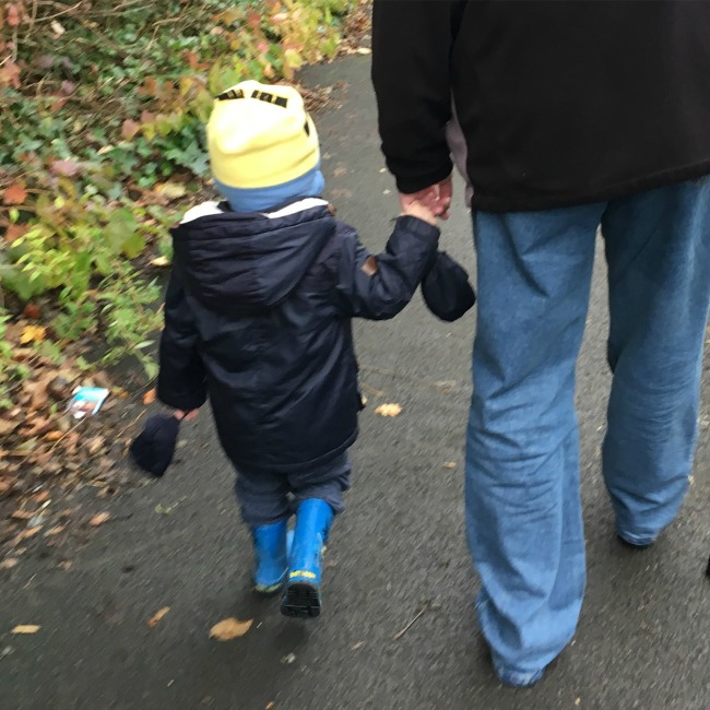 balance-bikes-and-buses-toddler-holding-an-adults-hand