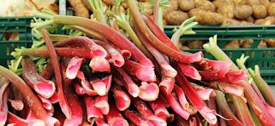La rhubarbe : idéale contre la constipation
