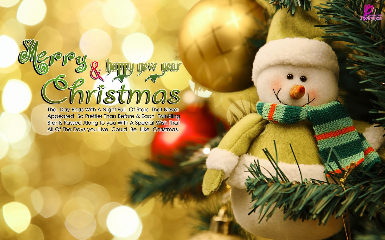 special merry christmas wishes