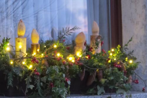 -neuer Gartentraum-: Weihnachtsdeko Aus Der Natur