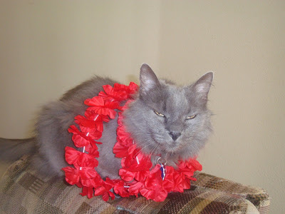 Image result for sos aloha lucky lei