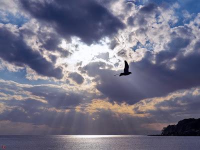 Setting sun: Yuigahama-beach (Kamakura)