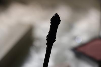 burberry cat lash mascara wand