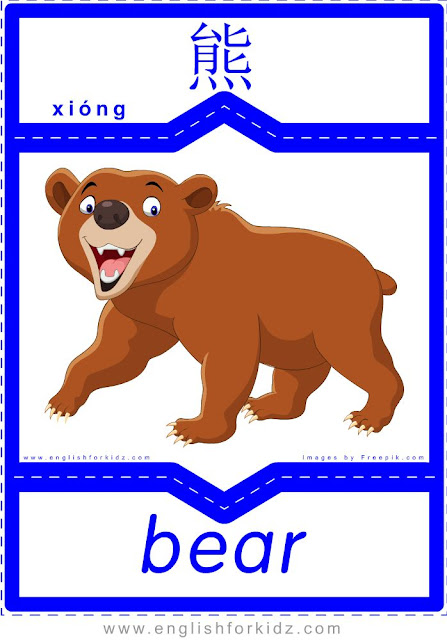 Bear - English-Chinese flashcards for wild animals topic