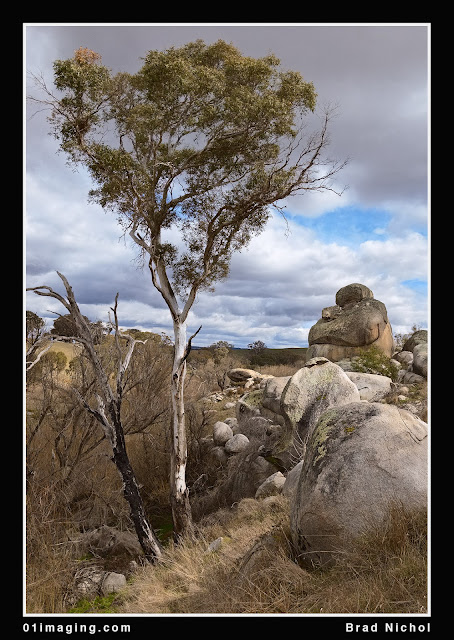 Pejar Creek NSW Landscape, Rocks, Boulders and Old Gum crop 7