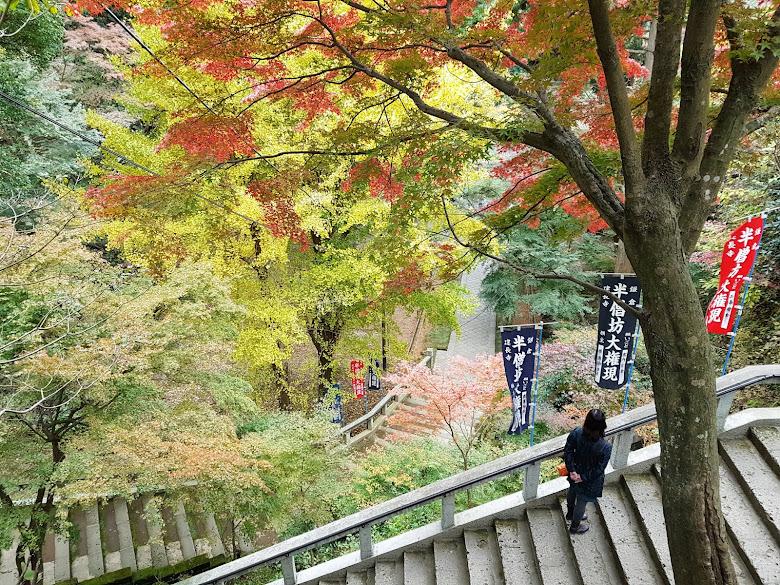 建長寺半僧坊內的秋色