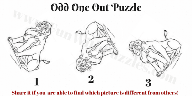 Which Lion Pair is Different in Picture Puzzle?