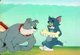 The Framed Cat tom and jerry download