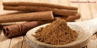 kayu manis, obat herbal kayu manis, khasiat kayu manis, kayu manis untuk obat diabetes, kayu manis untuk kesuburan, kayu manis dan madu untuk kesuburan, manfaat kayu manis bagi kesehatan dan untuk diabetes